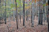 00 South Pointe Lot 20, Mill Spring, NC 28756 - Image 1