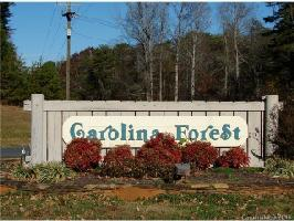 Lot 1006 256 Carolina Drive , Troy, NC 27371 Property Photo