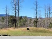 0 Mountain Lot 24, Mill Spring, NC 28756 - Image 1
