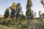 11535 N Waterford Loop, Hauser, ID 83854 - Image 1: Perfect 1.26 acre site