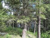 BLK8 LOT23 Forest Ridge RD, Blanchard, ID 83804 - Image 1: BLK 8 Lot 23 Forest Ridge