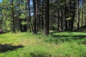 Lot 6 Hanaford Road, Blanchard, ID 83804 - Image 1: Ready to Build
