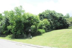 Lot 10 Millstone Dr Property Photo
