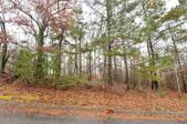 5903 Eagle Bluff Tr, Chattanooga, TN 37416 - Image 1: View of lot from River Run side 1