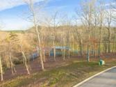 15869 Channel Pointe Dr, Sale Creek, TN 37373 - Image 1: image