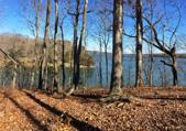 15913 Channel Pointe Dr 56, Sale Creek, TN 37373 - Image 1: Water view 1