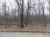 Lot 521 OAK RUN, Farwell, MI 48622 - Image 1