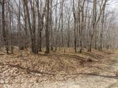 Lot 504 OAK RUN, Farwell, MI 48622 - Image 1