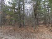 Lot 1112 PINE RUN, Farwell, MI 48622 - Image 1