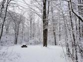 Lot 1222 PLUM TERRACE, Farwell, MI 48622 - Image 1