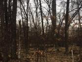 Lot 87 MAPLE, Gladwin, MI 48624 - Image 1
