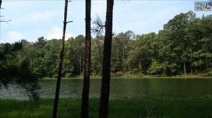 0 GRASSY MEADOW COURT, Chapin, SC 29036 Property Photo