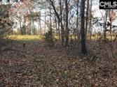 2292 Scurry Island Road, Chappells, SC 29037 - Image 1