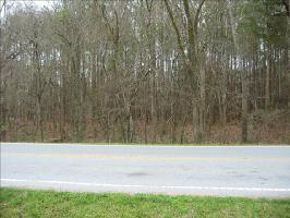 0 AMICKS FERRY ROAD, Chapin, SC 29036 Property Photo
