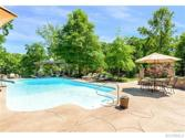 20107 Oak River Ct, Chesterfield, VA 23803 - Image 1: Looks like a 5 star resort does it not It really is better than the picture!
