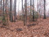 0 Huggins Rd. Lot 5 & 6, Tyrone, NY 14887 - Image 1: Main View