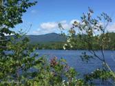 377 NYS ROUTE 74, Schroon, NY 12870 - Image 1