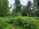 113 STANYON PARK DR, Speculator, NY 12164 - Image 1