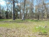 Lot 5 County Line Road, Georgetown, GA 39854 - Image 1: Main View
