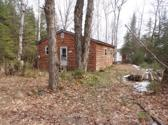 22738 S Maple Point RD, Pickford, MI 49774 - Image 1: 1-Cabin