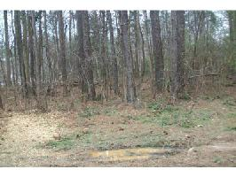 3 LANIER HEIGHTS Lane Lot 3, Buford, GA 30518 Property Photo