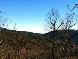 8104 Wilderness Parkway Lot 8104, Big Canoe, GA 30143 Property Photos