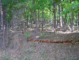 1318 Coachwhip Trail Lot 1318 Property Photos
