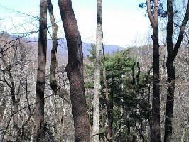 3406 Wildcat Trail Lot 3406, Big Canoe, GA 30143 Property Photo