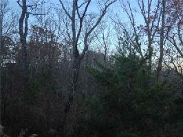 335 Blazingstar Trail Lot 3573, Big Canoe, GA 30143 Property Photos