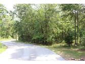 48 PIRKLE LEAKE Road Lot 48, Dawsonville, GA 30534 - Image 1: Beautiful Lot Across the Street from Lake Lanier - Wraps around the corner with center island at end of street.  Great Location Close to New Shopping at Hwy 53 and Outlet Mall