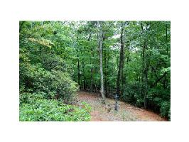 1123 Quail Cove Drive Lot 1123, Big Canoe, GA 30143 Property Photo