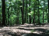166 Ponderosa Lane Lot 267, Waleska, GA 30183 - Image 1: Beautiful Wooded Lot Would Allow Spectacular Mountian View!