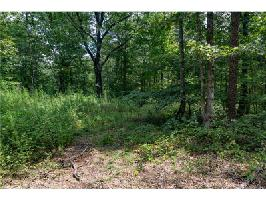 9320 Blackwell Creek Way Lot 9320, Big Canoe, GA 30143 Property Photos