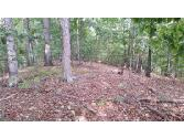 8315 Lynn Drive, Gainesville, GA 30506 - Image 1: Beautiful, mature hardwoods abound on this tract of land. Adjacent 4.2 acres can combine to make a 5+ acre retreat.