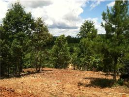 107 Rock Creek Trail Lot 3, Toccoa, GA 30577 Property Photo