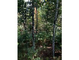 1630 CARMON Way Lot 1630, Ranger, GA 30734 Property Photo