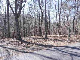 75 Goldfinch Pt, Big Canoe, GA 30143 Property Photo