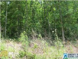 0 Christie Ln Lot 3, Wedowee, AL 36278 Property Photos