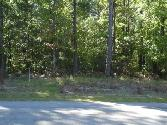 0 County Rd 450, Lanett, AL 36863 - Image 1: Beautiful Lot for Dream Home Across from West Point Lake. Lake Access, water and electricity. Location in a cul-de-sac in quiet subdivision.