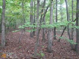 0 Shore Crest Dr Lot 8, Martin, GA 30557 Property Photo