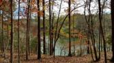 Lot 63 Hornets Bridge Dr, Elberton, GA 30635 - Image 1