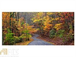 8132 Wilderness Pkwy, Dawsonville, GA 30534 Property Photo