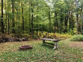 Off CHANEY COVE RD Lot 5.9 Ac, Bessemer, MI 49911 - Image 1