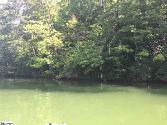 00 Hawk Ridge Drive, Mill Spring, NC 28756 - Image 1: Lot View from Lake