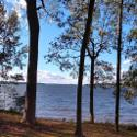 00 SCURRY ISLAND ROAD, Chappells, SC 29303 - Image 1: Main View