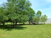 00 Lakeway Drive Lot 21, Coldspring, TX 77331 - Image 1: This waterfront lot located in the community of Coldspring Terrace.