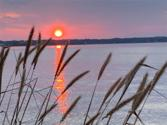 TBD Burris Drive  Lot 1 Lot 1, Livingston, TX 77351 - Image 1: Wonderful .8 A lot available for you to build your Lake Livingston retreat.  So you can watch endless sunsets.
