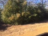 65 Valley View Drive Lot 5, Hilltop Lakes, TX 77871 - Image 1