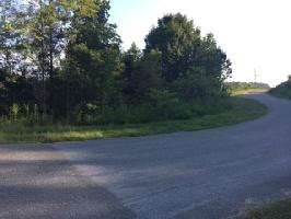 Whistle Valley Rd 567, New Tazewell, TN 37825 Property Photo