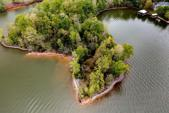 TBD Goose Pointe Drive, Spring City, TN 37381 - Image 1: 20212407_0